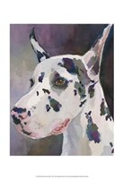 Mary Kay Great Dane Fine-Art Print