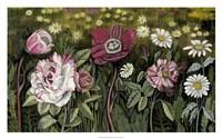 Vintage Garden I Fine-Art Print