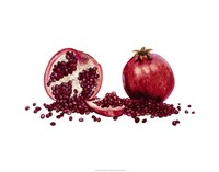 Watercolor Pomegranate Fine-Art Print