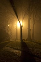 Light Through The Mist Fine-Art Print