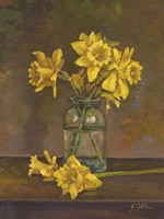 Late Daffs Fine-Art Print