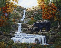 Black Bear Falls Fine-Art Print