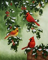 Cardinals Hollies with Snow Fine-Art Print