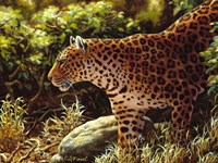 On The Prowl Fine-Art Print