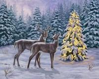 White-tail Christmas Fine-Art Print