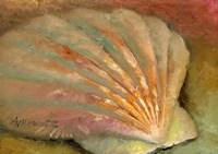 Scallop Seashell Fine-Art Print