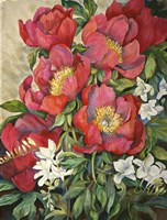 Red Peonies Fine-Art Print