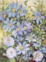 Blue Clematis Fine-Art Print
