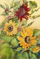 Rust Sunflower Fine-Art Print