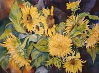Sunny Side Up Fine-Art Print