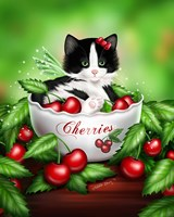 Cherry Kitten Fine-Art Print