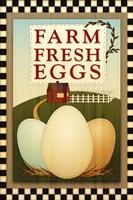Farm Fresh Eggs Fine-Art Print