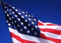 American Flag Waving in the Wind Fine-Art Print