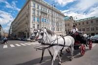 Horse Drawn Carriage in Vienna Fine-Art Print