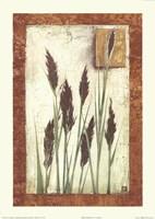 Green Grasses Fine-Art Print