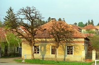 House in Tokaj Village, Mad, Hungary Fine-Art Print