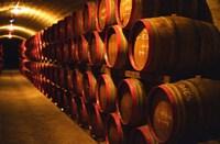 Barrels of Tokaj Wine in Disznoko Cellars, Hungary Fine-Art Print
