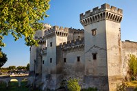 Tarascon Castle, Arles, Provence, France Fine-Art Print