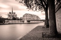 River Seine and Cathedral Notre Dame Fine-Art Print