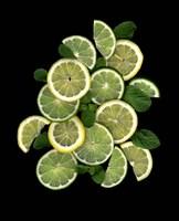 Lemons, Limes & Mint Fine-Art Print