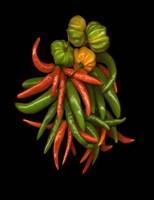Hot Peppers 3 Fine-Art Print