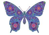 Butterfly Fine-Art Print