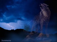 Distant Thunder Fine-Art Print
