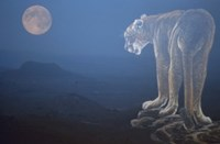 Tiger And Full Moon Fine-Art Print