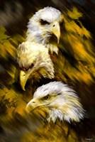 Eagle Three Fine-Art Print