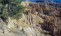 Bryce Canyon 3 Fine-Art Print
