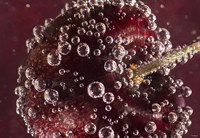 Marroon Fruit Closeup With Raindrops II Fine-Art Print