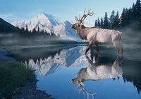 Reflections Of Glacier Fine-Art Print