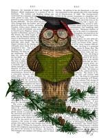 Owl Reading On Branch Framed Print