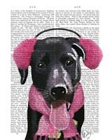 Black Labrador With Ear Muffs Fine-Art Print