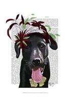 Black Labrador With Green Fascinator Fine-Art Print