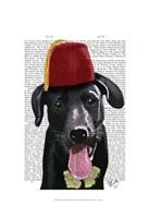 Black Labrador With Fez Fine-Art Print