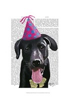 Black Labrador With Party Hat Fine-Art Print