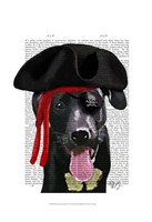Black Labrador Pirate Fine-Art Print