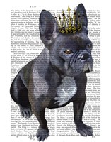 French Bulldog King Fine-Art Print