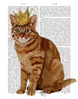 Ginger Cat with Crown Full Framed Print