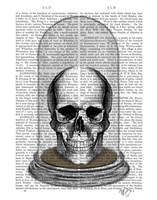 Skull In Bell Jar Fine-Art Print