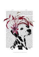 Dalmatian With Red Fascinator Fine-Art Print