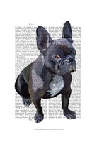 French Bulldog Plain Fine-Art Print