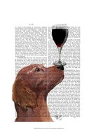 Red Setter Dog Au Vin Fine-Art Print