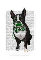 Boston Terrier With Green Moustache And Spotty Green Bow Tie Fine-Art Print