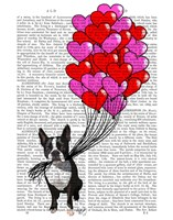 Boston Terrier And Balloons Framed Print