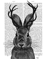 Jackalope with Grey Antlers Fine-Art Print