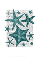Green Starfish Collection Fine-Art Print