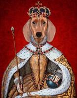 Dachshund Queen Fine-Art Print