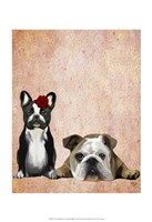 French Bulldog and English Bulldog Fine-Art Print